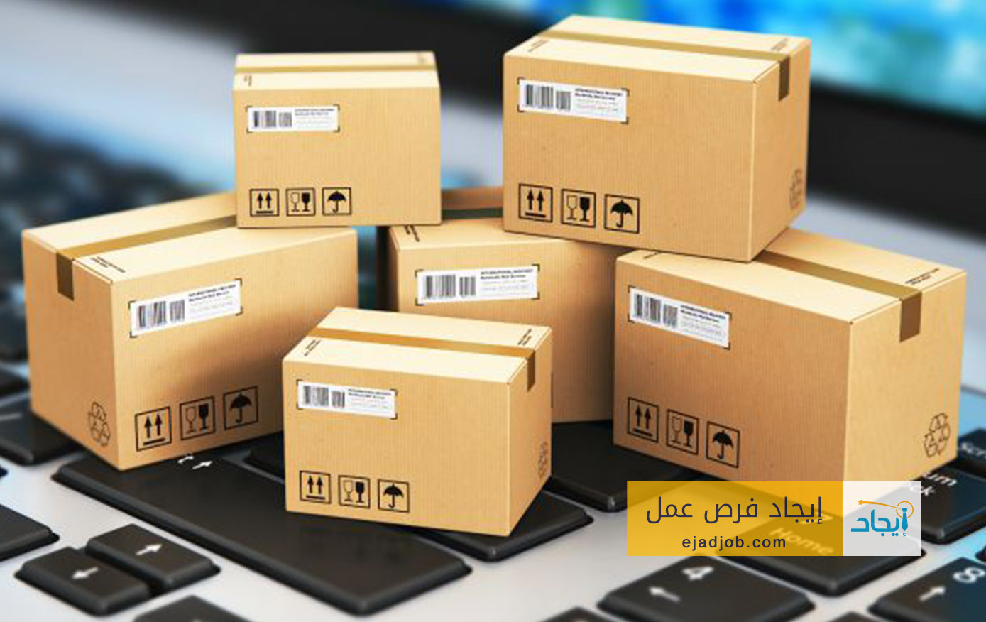 Logistic Solution Specialist