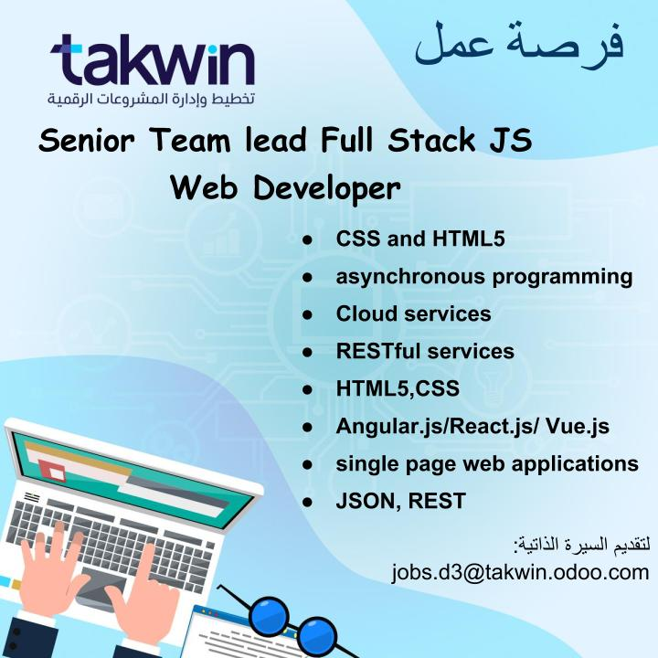 Senior Team Lead Full Stack JS Web Developer